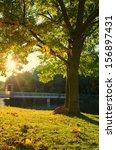 autumn landscape in city park | Shutterstock . vector #156897431