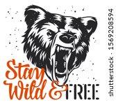 handmade typography and bear... | Shutterstock .eps vector #1569208594