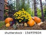 Autumn Decor In A Woodland...