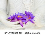 Fresh Flue Star Water Lily Or...