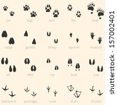 Vector set of 20 animal footprints icon - stock vector