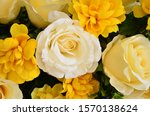 Rose Flowers Are Made From...