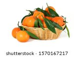 Basket Of Fresh  Corsican...