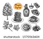 popular pastries with maple... | Shutterstock .eps vector #1570563604