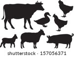 Vector farm animal silhouettes including cow, sheep, lamb, pig, duck and chickens. - stock vector
