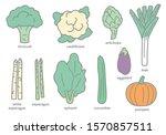 hand drawn vector graphic... | Shutterstock .eps vector #1570857511