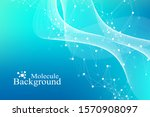 scientific vector illustration...   Shutterstock .eps vector #1570908097