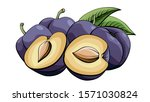 vector simple illustration of... | Shutterstock .eps vector #1571030824