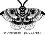 Vintage Hand Drawn Butterfly...