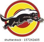illustration of a honey badger  ... | Shutterstock .eps vector #157242605