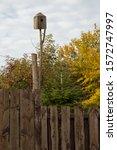 Birdhouse on a tree branch....