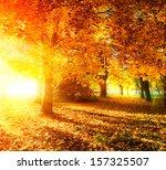 autumn. fall. autumnal park.... | Shutterstock . vector #157325507