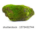 Moss Green On Rock  White...