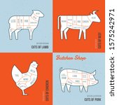 set a schematic view of animals ...   Shutterstock .eps vector #1575242971