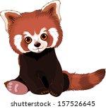 Cute Sitting Red Panda