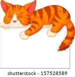 Stock vector cute cat sleeping 157528589