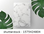 white blank square  rectangle... | Shutterstock .eps vector #1575424804