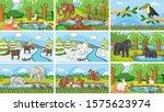 background scenes of animals in ...   Shutterstock .eps vector #1575623974
