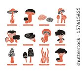 set with various edible fungi... | Shutterstock .eps vector #157615625