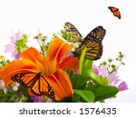 Monarch Butterflies On Bouquet...