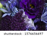 Purple Flowers With Blue...