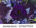 Purple Flower With Blue...