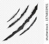 claws scratches.  vector bear... | Shutterstock .eps vector #1576833901