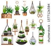 house plants in hanging macrame ... | Shutterstock .eps vector #1577126584