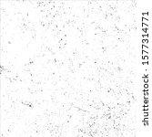 vector grunge black and white... | Shutterstock .eps vector #1577314771
