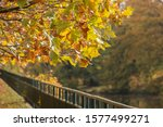 green railed on the river bank... | Shutterstock . vector #1577499271