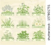 herbs,lavender,chamomile, chives, garlic, parsley, dill, sage and basil, herbal vintage background