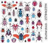 bug species and exotic beetles... | Shutterstock .eps vector #1578463594