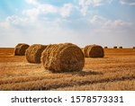 Haystacks Harvested On A Field...