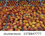 Small photo of Peaches in trays, thousands for sale at the week-end markets, all from Donnybrook and Bridgetown. Ripe peaches, bulk display at the markets,trucked in from Donnybrook, Western Australia.