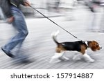 Stock photo walking the dog on the street in motion blur 157914887