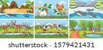 background scenes of animals in ... | Shutterstock .eps vector #1579421431