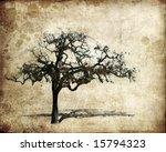 Oak Tree On A Grungy Background