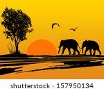 elephants silhouette in africa...   Shutterstock .eps vector #157950134