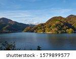 Autumn Leaves Of Lake Tanzawa...