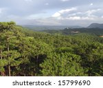 forest view | Shutterstock . vector #15799690