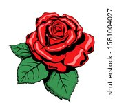 vector image of a red rose....   Shutterstock .eps vector #1581004027
