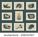 fossiles set   Shutterstock .eps vector #158101967