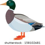 abstract,animal,art,beak,bird,black,characters,computer,cute,design,domestic,duck,duckling,element,farm