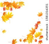 maple leaves vector background  ... | Shutterstock .eps vector #1581316351
