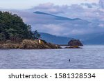 Small lighthouse in the Pudget Sound, WA