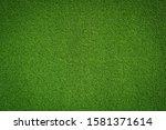 Fresh Green Grass Background...