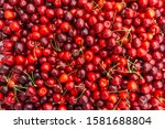 Pile Of Ripe Cherries With...