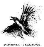crow painted in ink on a white... | Shutterstock .eps vector #1582350901
