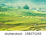 rice fields mu cang chai ... | Shutterstock . vector #158271245