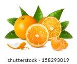 oranges. cut oranges  whole... | Shutterstock .eps vector #158293019